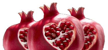 fruit img